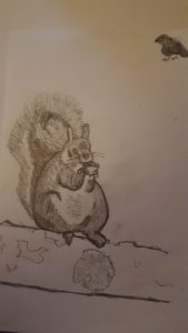 Squirrel drawing from cr0